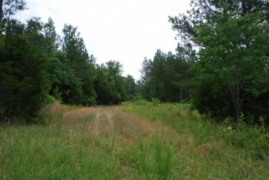 Land for Sale Union, SC