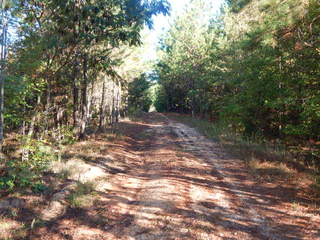 Land for sale SC