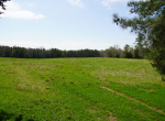 whitmire-sc-land-for-sale-1