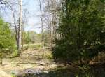 whitmire-sc-land-for-sale-11