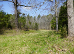whitmire-sc-land-for-sale-12