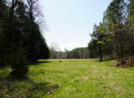 whitmire-sc-land-for-sale-13