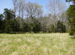 whitmire-sc-land-for-sale-19