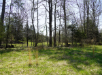 whitmire-sc-land-for-sale-20