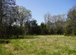 whitmire-sc-land-for-sale-21
