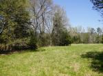 whitmire-sc-land-for-sale-22