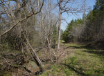 whitmire-sc-land-for-sale-27