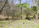 whitmire-sc-land-for-sale-29