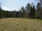 whitmire-sc-land-for-sale-30