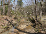 whitmire-sc-land-for-sale-39