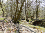 whitmire-sc-land-for-sale-40