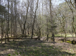 whitmire-sc-land-for-sale-41