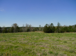 whitmire-sc-land-for-sale-43