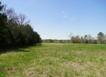 whitmire-sc-land-for-sale-44