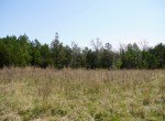 whitmire-sc-land-for-sale-5