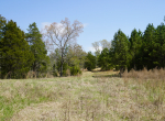 whitmire-sc-land-for-sale-8
